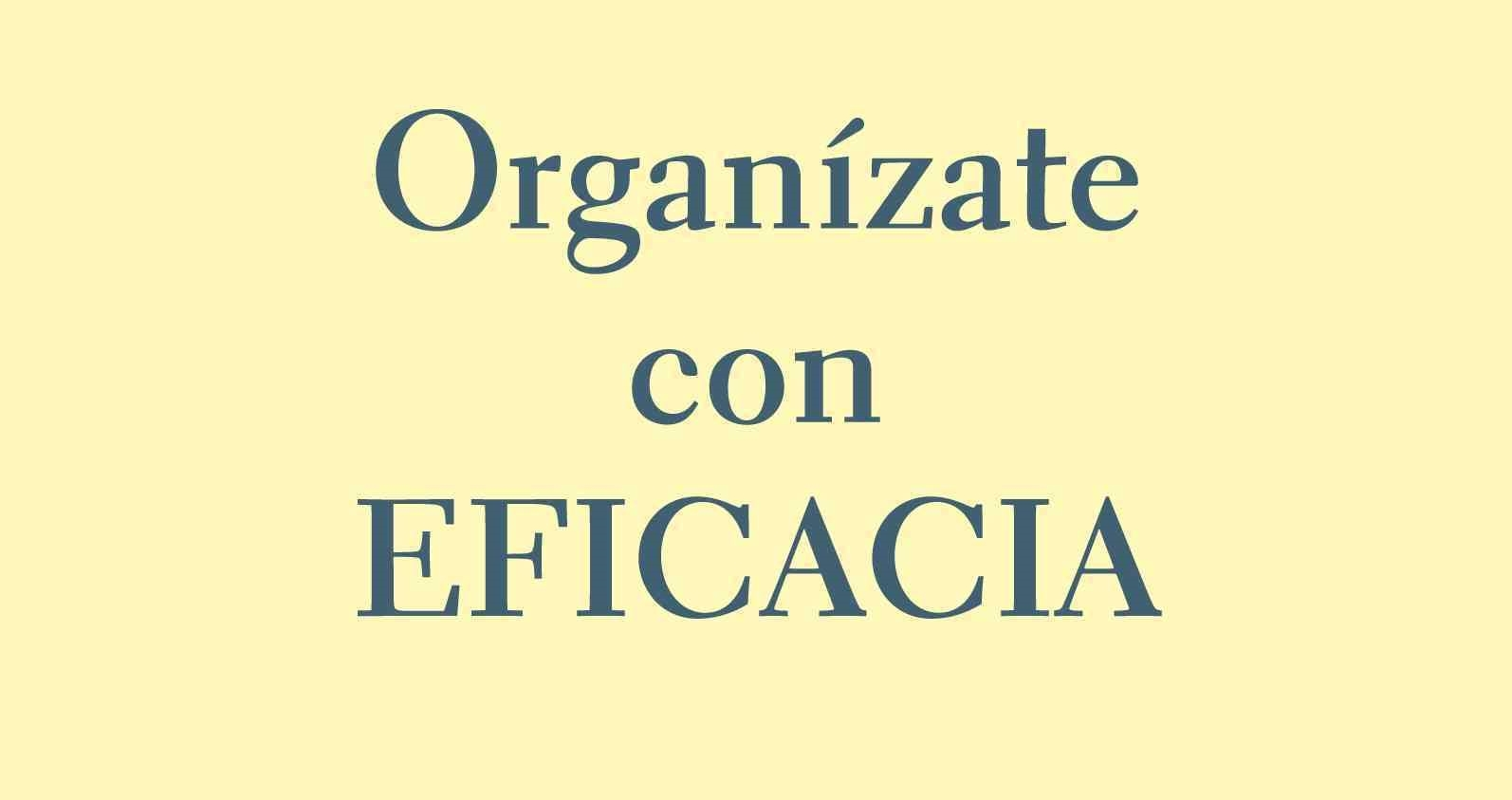 Libro Organízate con eficacia resumen